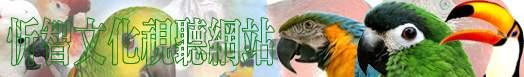 忻智文化視聽網站